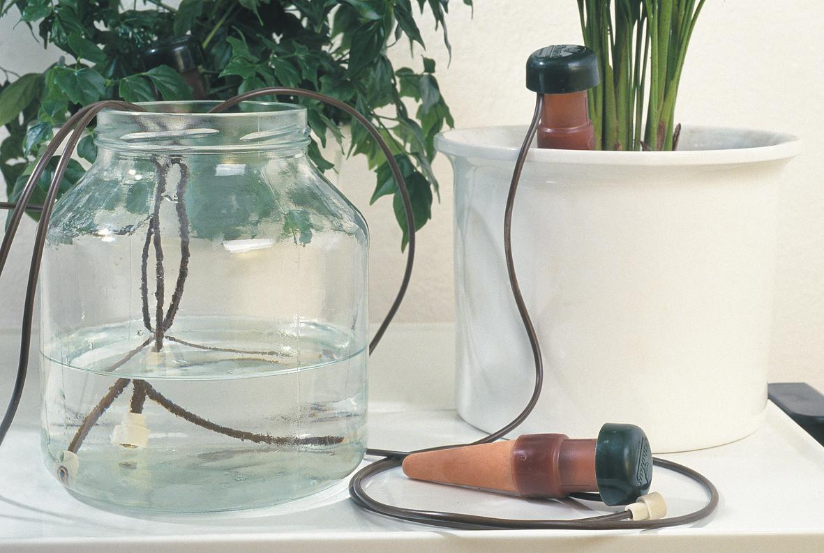 Прикорневой полив из пластиковых бутылок своими руками